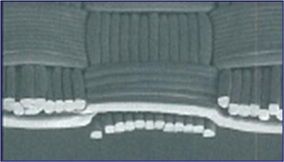 極細ナイロン織物の一例 ※(経緯ともに17dT/12f)